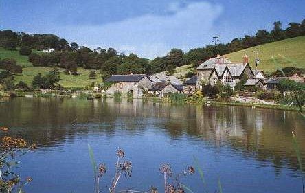 Malston Mill & Lake, Devon