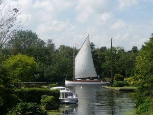 white moth sailing wherry