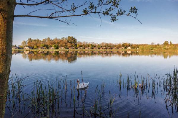 lakepochardlodges