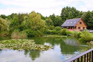 Dandys, The - English Country Garden